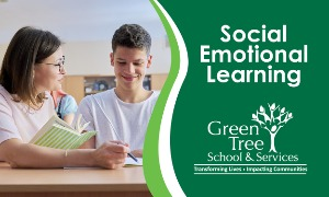 Social Emotional Learning in School and at Home