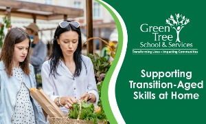 Supporting Transition-Aged Skills at Home